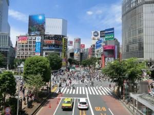渋谷・吉祥寺